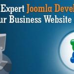 hiring expert joomla developer