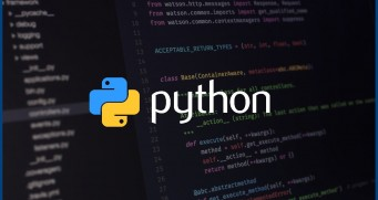 10 Ways Python Development Can Benefit Your Business