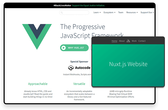 Vue js developer