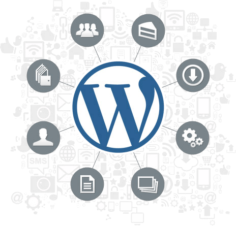 Outsource Dedicated Wordpress Developers
